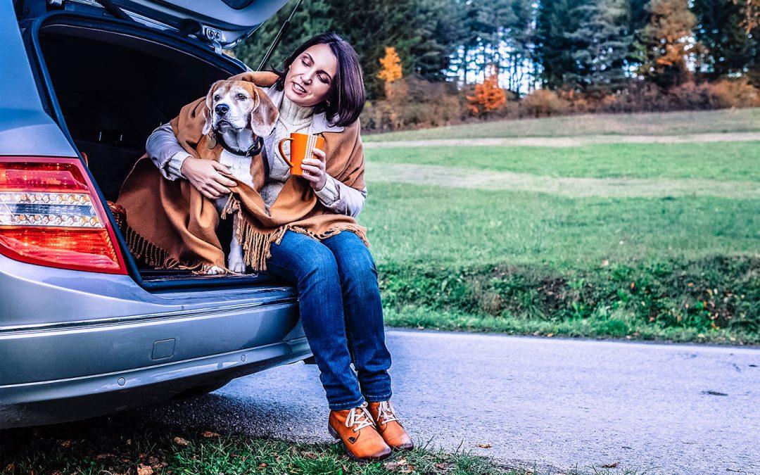 Pies nawalizkach – co zabrać wpodróż psem