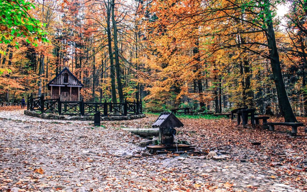 Jesień wgórach razem zpsami